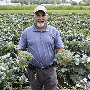 ARS scientist holding broccoli heads in a field