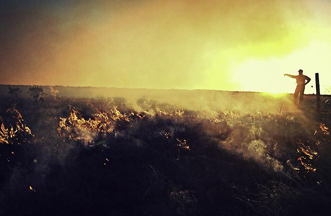 ARS ecologist tracks a range fire