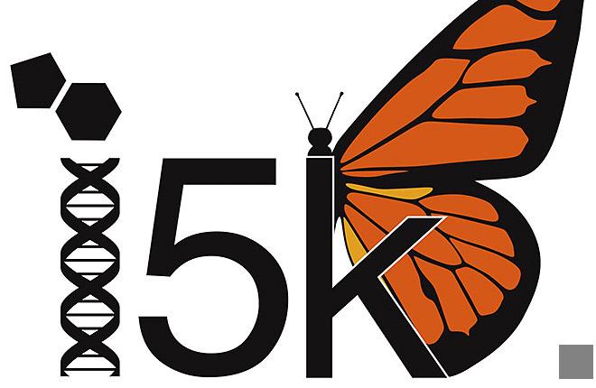 i5k Initiative logo illustrating DNA strand, 5K, butterfly