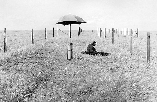 USDA technician collects field vegetation samples in 1927