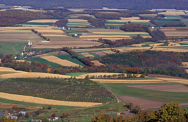 Aerial view of forest and farmland in a Pennsylvania watershed