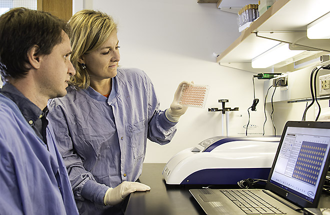 Two ARS scientists looking at a cell culture plate in the lab