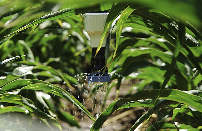 Low-elevation sprayer applying water to corn plants