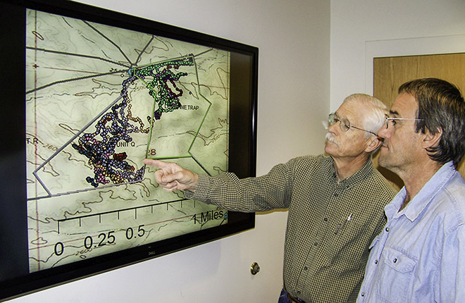 Two ARS scientists looking at a data map showing heifer locations