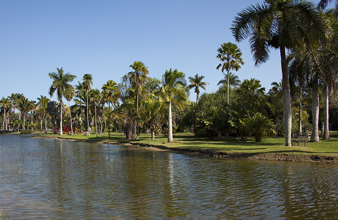 The Fairchild Tropical Botanic Garden.