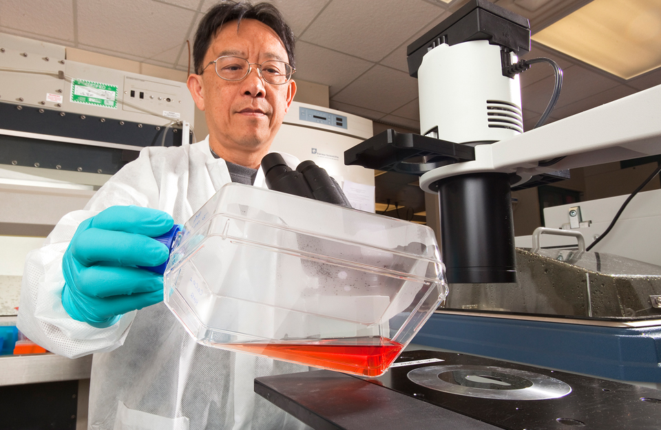 Scientist Thomas Wang in laboratory.