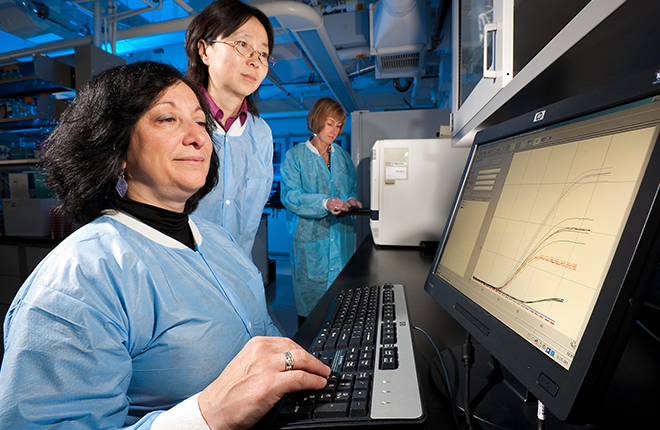 ARS scientists review PCR lab results on a computer screen.