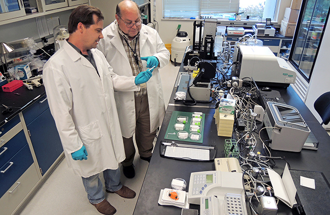 Scientists examine devices that identify botulism toxin serotypes.