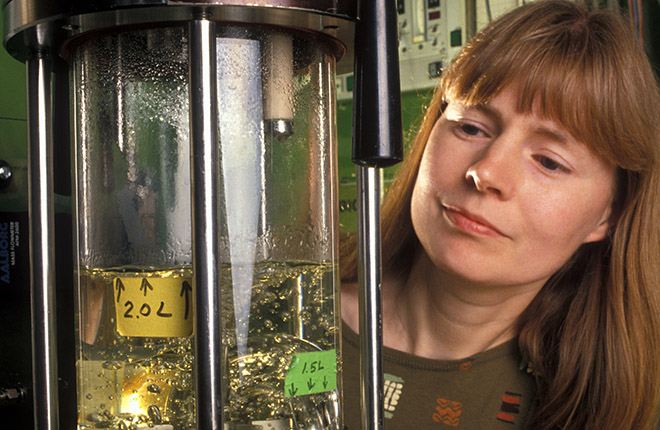 A scientist prepares a bioreactor to evaluate yeast fermentation of biomass.