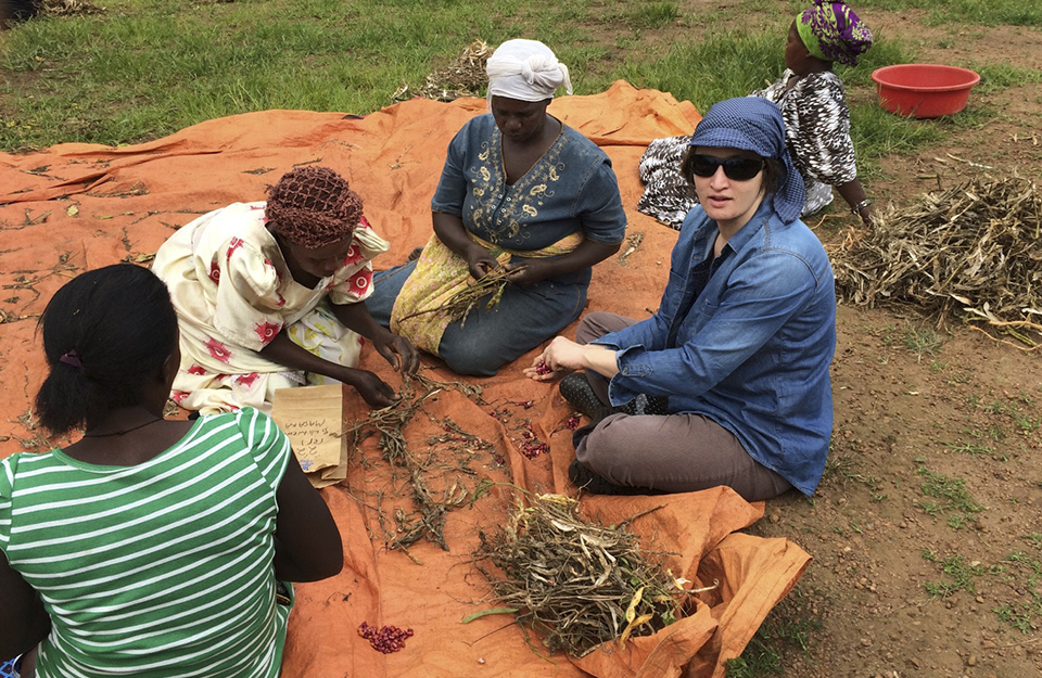 Scientist threshing beans with farmers in Uganda.