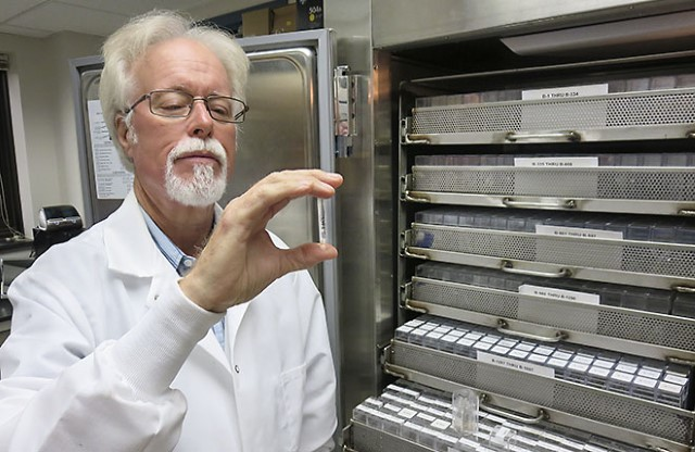 A scientist holds a sample from culture collection