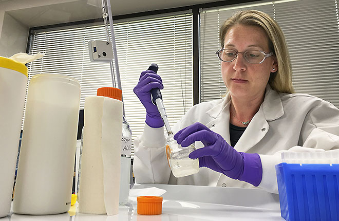 ARS scientist prepares disinfecting solutions