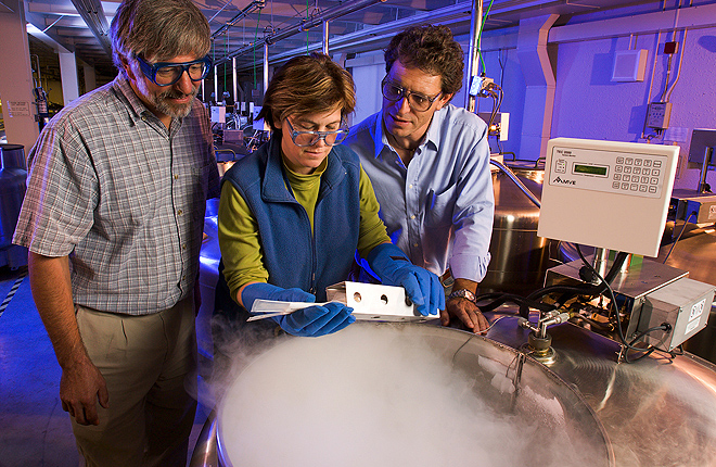 Three scientists prepare seeds for liquid nitrogen cryopreservation