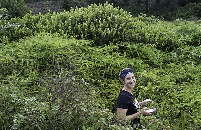 ARS scientist collecting plant samples in Hong Kong