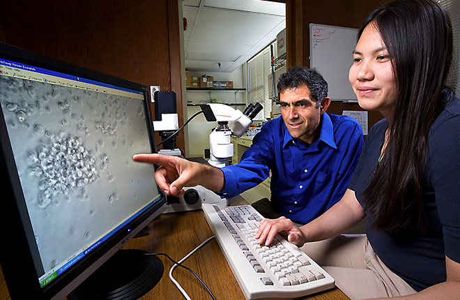 Two scientists viewing computer image of bacteria