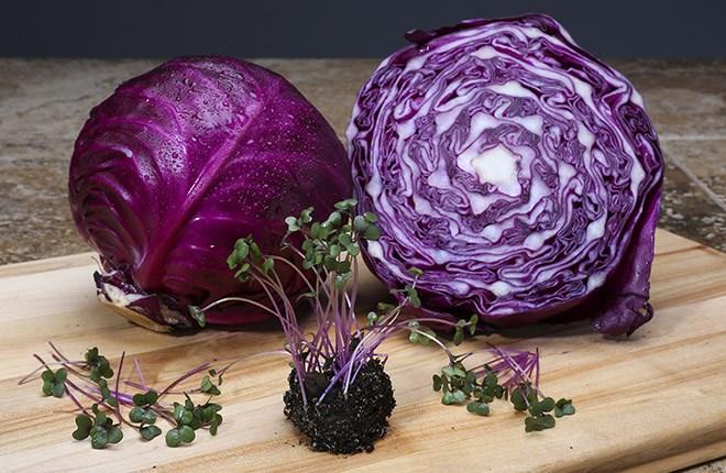 mikrozöldség otthon élelmiszer