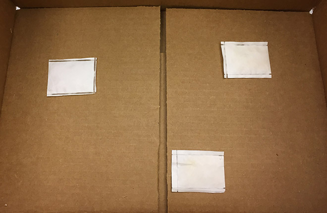 Chlorine dioxide pouches inside cardboard carton