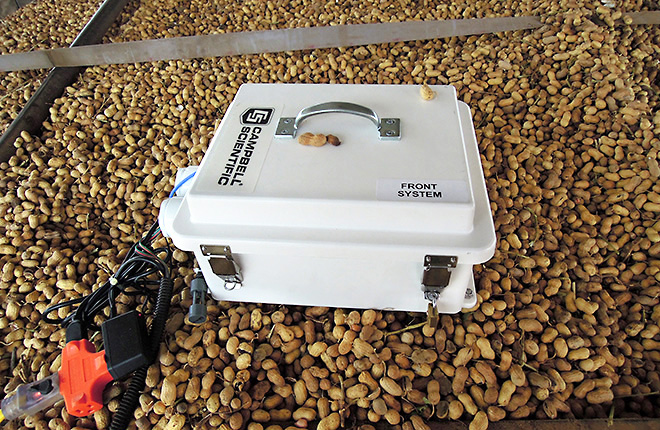 Moisture-monitoring system on top of peanuts